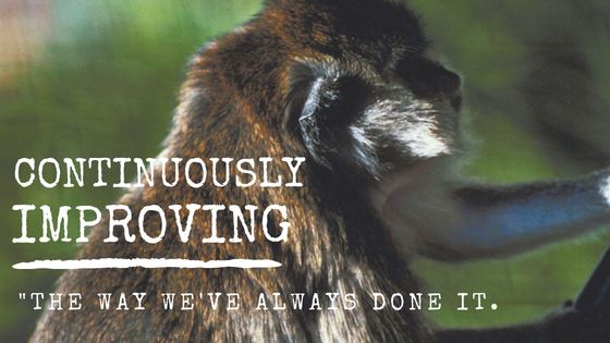 Continuously Improving | The Way We've Always Done It